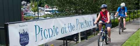 Picnic at the Precinct banner